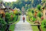 INDONESIA - 21 días entre orangutanes, templos y playas.(EN CONSTRUCCION)