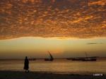 Tanzania y Zanzibar, diario de nuestro primer viaje a Africa.