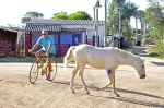 cyclist and horse in Valizas street Uruguay