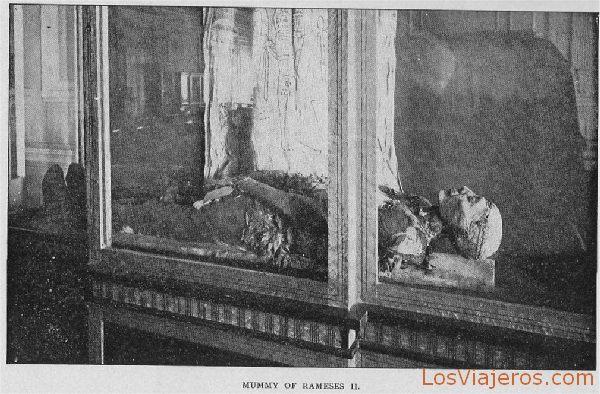 Mummy of Rameses II - Egypt Momia de Ramsés II - Egipto