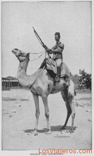 Soldado encima de un dromedario - Egipto