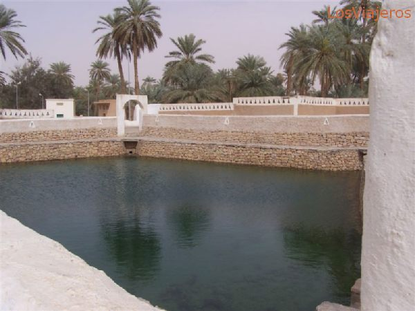 Ghadames, alberca llena a finales de Marzo - Libia Ghadames, full pond at march ends - Libya