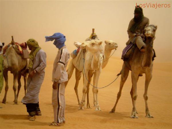 Tuaregs  amigos, conductores de camellos, o de vehículos todoterreno - Libia