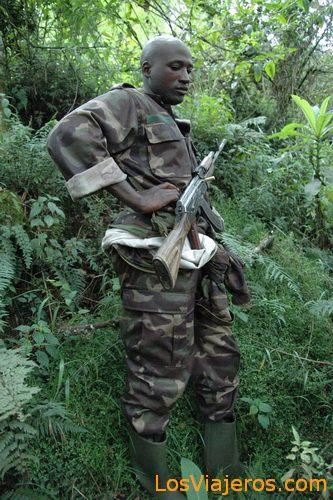 Trekking a los gorilas - Ruanda