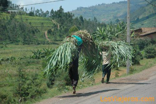 Población ruandesa - Ruanda