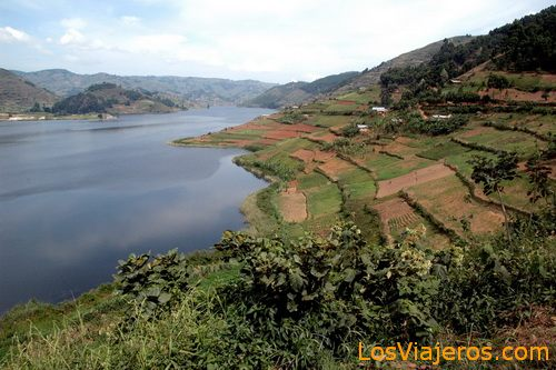 Bunyonyi lake - Uganda Lago Bunyonyi - Uganda