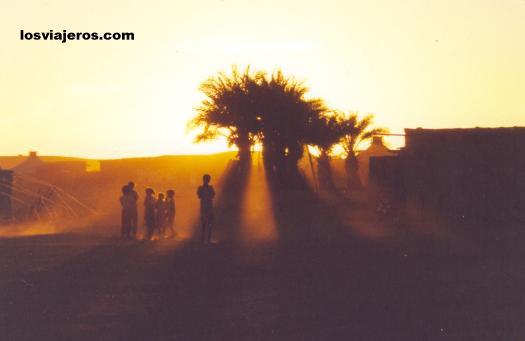 Sunset in the oasis - Tindouf - Algeria Puesta de sol en un oasis del desierto - Tindouf - Argelia