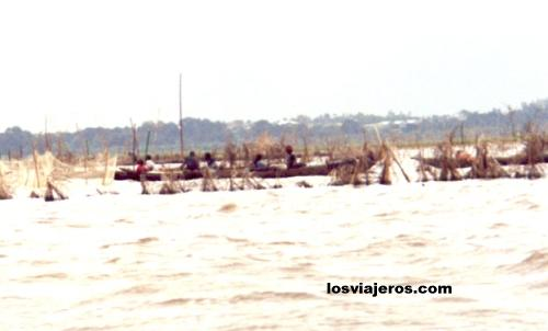 Fishing nets in the Lagoo of Ganvie - Benin Redes de los pescadores - Ganvie - Benin