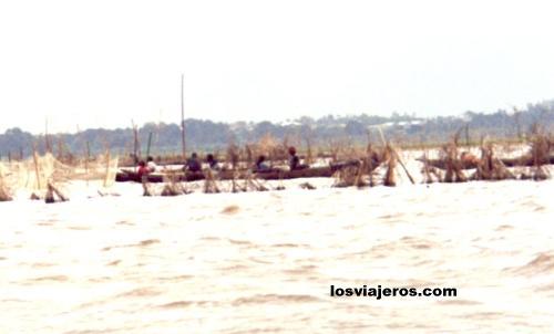 Fishing nets in the Lagoo of Ganvie - Benin Redes de los pescadores - Ganvie - Benin