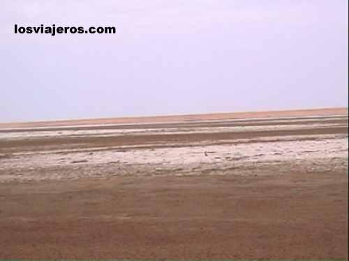 Chalbi desert - Kenya Desierto de Chalbi - Norte de Kenia