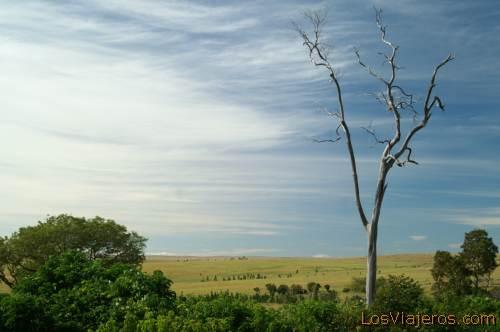 Isialo National Park - Madagascar Parque Nacional de Isialo - Madagascar