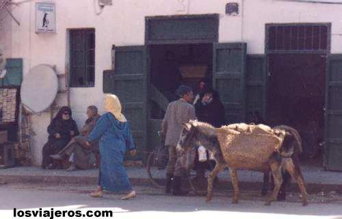 Mujer con Burro - Morocco Mujer con Burro - Marruecos
