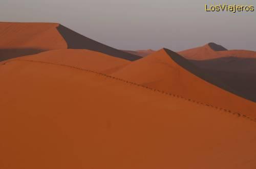 Sunrise over the dunes of the Namib - Namibia Amanece en el desierto de Namib - Namibia