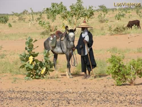 Pastor bororo - carretera Abalak- Ingal- Niger Bororo in the road to Abalak - Niger