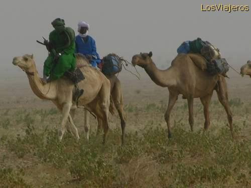 Caravan touareg - Tenere Desert - Niger Caravana tuareg- desierto Tenere - Niger