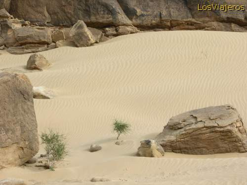 Landscape -Tenere Desert - Niger Paisaje - desierto Tenere - Niger
