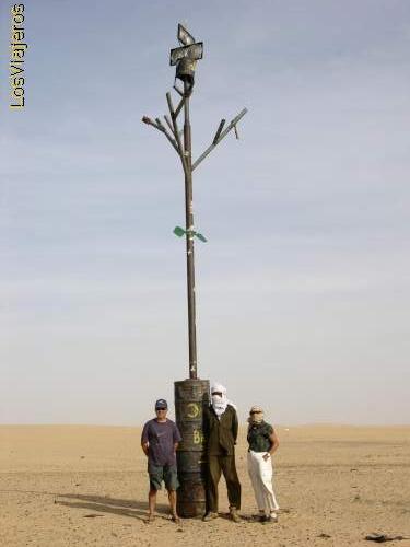 Tenere Desert Tree -Niger Nuevo Arbol del Tenere -Niger