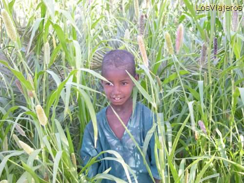 Tuareg young boy - Niger Niño trabajando - Niger