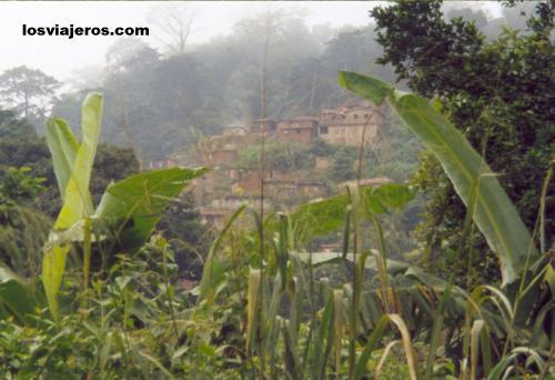 Pueblo entre la niebla de la montaña - Pic D'Agou - Togo