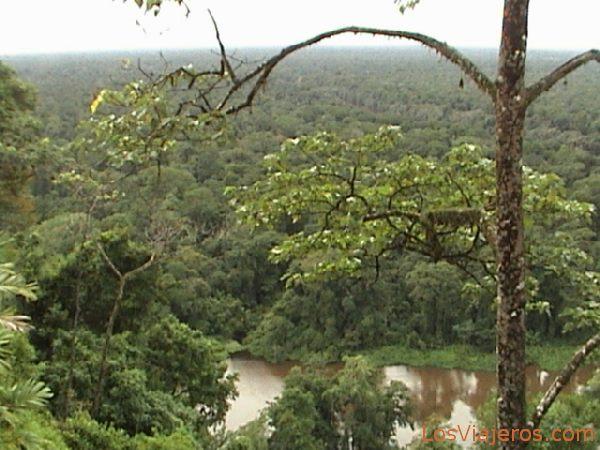 Parque Nacional de Tortuguero - Costa Rica Tortugero National Park - Costa Rica