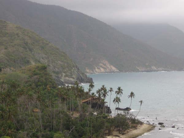 Postal de Choroní - Venezuela Landscape of Choroni - Venezuela
