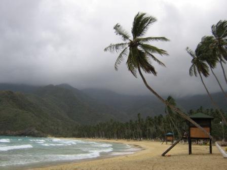 Playa Grande - Venezuela Big Beach - Venezuela