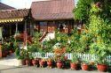 Go to big photo: Kampung, Malay country house -Malacca or Melaka- Malaysia