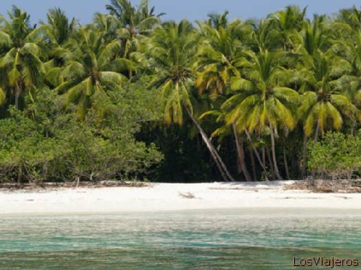 Pic-nic Island- Maldives Isla pic-nic- Maldivas