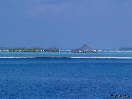 Ari Atoll- Maldivas