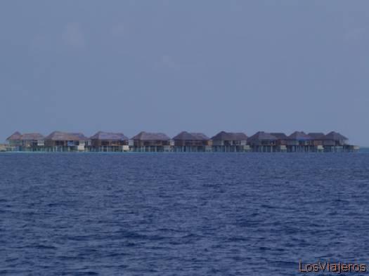 Relájate y disfruta- Maldivas