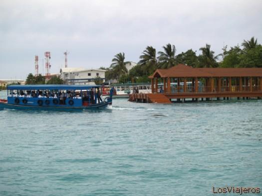 Dhoni Autobus- Maldivas