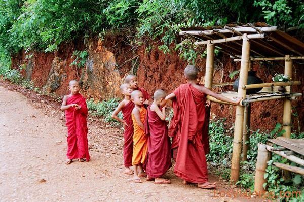 Monks-Yatzakyi-Burma - Myanmar Monjes-Yatzakyi-Myanmar
