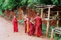 Ir a Foto: Monjes-Yatzakyi-Myanmar  Go to Photo: Monks-Yatzakyi-Burma