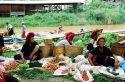 Ir a Foto: Mercado de Phaungdawoo-Lago Inle-Myanmar  Go to Photo: Phaungdawoo Market-Inle Lake-Burma