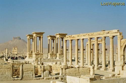 Palmyra - Syria Palmira - Siria