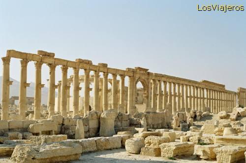 Palmira - Siria Palmyra - Syria