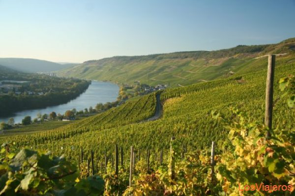 Mosel River - Germany El Mosela - Alemania