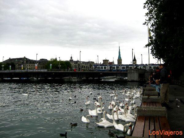Zurich - Switzerland Zurich - Suiza