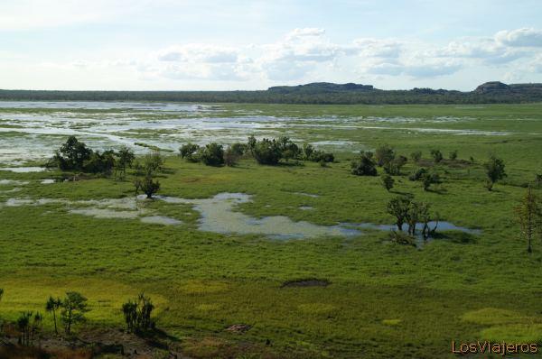 Wetlands in Kakadu National Park - Australia Parque Nacional de Kakadu - Patrimonio de la Humanidad - Australia