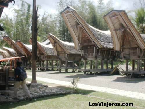Casas típicas de los Toraja - Indonesia Toraja tribe - Tipical Houses - Indonesia