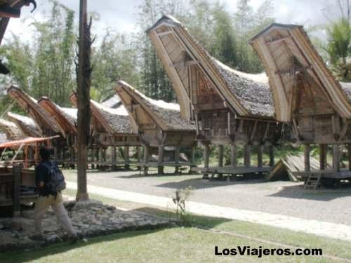 Casas típicas de los Toraja - Indonesia