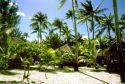 Ampliar Foto: Bora Bora. Hotel Eden Beach